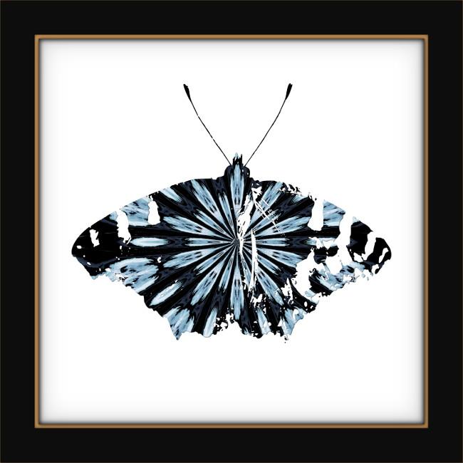 [Entomologie chromatique] Papillon #4 [2017] (Création et conception graphique de Didier Desmet) [Artiste Infirme Moteur Cérébral] [Infirmité Motrice Cérébrale] [IMC] [Paralysie Cérébrale] [Cerebral Palsy] [Handicap]