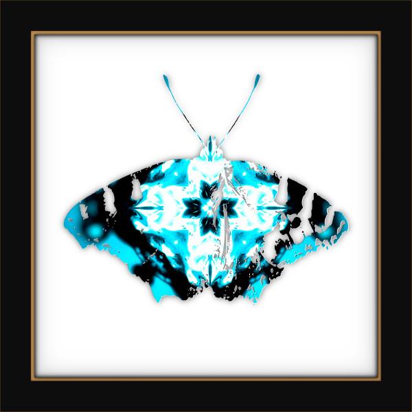 [Entomologie chromatique] Papillon #12 [2017] (Création et conception graphique de Didier Desmet) [Artiste Infirme Moteur Cérébral] [Infirmité Motrice Cérébrale] [IMC] [Paralysie Cérébrale] [Cerebral Palsy] [Handicap]