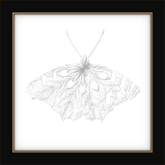 [Entomologie chromatique] Papillon #5 [2017] (Création et conception graphique de Didier Desmet) [Artiste Infirme Moteur Cérébral] [Infirmité Motrice Cérébrale] [IMC] [Paralysie Cérébrale] [Cerebral Palsy] [Handicap]