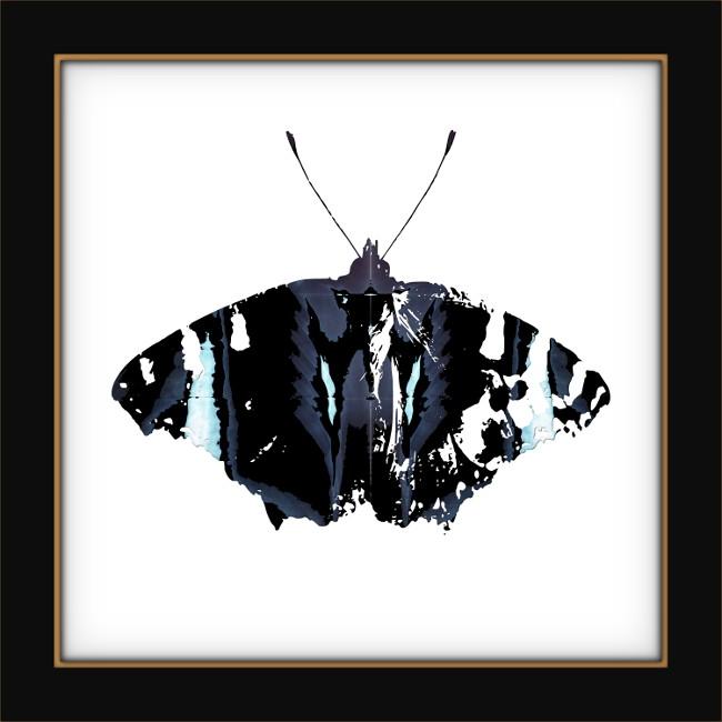[Entomologie chromatique] Papillon #1 [2017] (Création et conception graphique de Didier Desmet) [Artiste Infirme Moteur Cérébral] [Infirmité Motrice Cérébrale] [IMC] [Paralysie Cérébrale] [Cerebral Palsy] [Handicap]