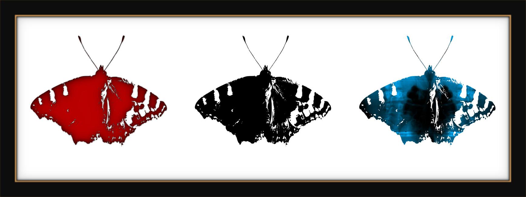 [Entomologie chromatique] Papillon #Métaphore (Triptyque) [2017] (Création et conception graphique de Didier Desmet) [Artiste Infirme Moteur Cérébral] [Infirmité Motrice Cérébrale] [IMC] [Paralysie Cérébrale] [Cerebral Palsy] [Handicap]