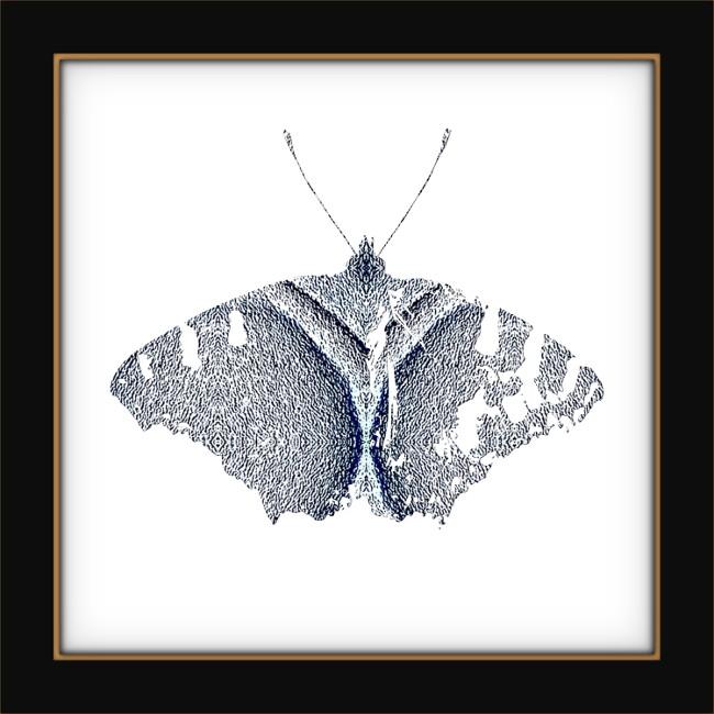 [Entomologie chromatique] Papillon #6 [2017] (Création et conception graphique de Didier Desmet) [Artiste Infirme Moteur Cérébral] [Infirmité Motrice Cérébrale] [IMC] [Paralysie Cérébrale] [Cerebral Palsy] [Handicap]
