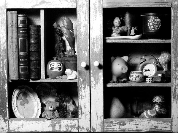 Cabinet de curiosités [2012] (Photo de Didier Desmet) [Artiste Infirme Moteur Cérébral] [Infirmité Motrice Cérébrale] [IMC] [Paralysie Cérébrale] [Cerebral Palsy] [Handicap]