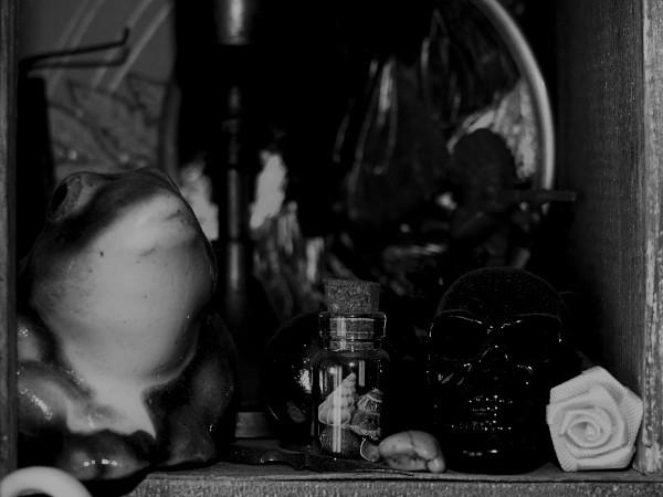 """Cabinet de curiosités """"Zoom-Crâne"""" [2020] (Photo de Didier Desmet) [Artiste Infirme Moteur Cérébral] [Infirmité Motrice Cérébrale] [IMC] [Paralysie Cérébrale] [Cerebral Palsy] [Handicap] [Kawaii]"""