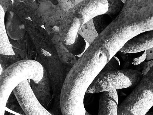 Cayeux-sur-mer - Chaîne (Somme - 80410) [2014] (Photo de Didier Desmet) Mars 1 [Artiste Infirme Moteur Cérébral] [Infirmité Motrice Cérébrale] [IMC] [Paralysie Cérébrale] [Cerebral Palsy] [Handicap]
