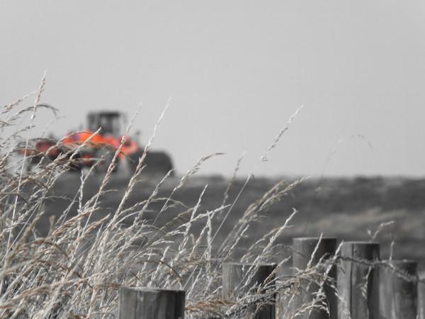 Cayeux-sur-mer - Hable d`Ault - Le tracteur rouge (Somme - 80410) [2014] (Photo de Didier Desmet) [Artiste Infirme Moteur Cérébral] [Infirmité Motrice Cérébrale] [IMC] [Paralysie Cérébrale] [Cerebral Palsy] [Handicap]