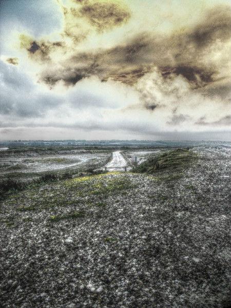 Cayeux-sur-mer - Hable d`Ault (Somme - 80410) [2011] (Photo de Didier Desmet) HDR [Artiste Infirme Moteur Cérébral] [Infirmité Motrice Cérébrale] [IMC] [Paralysie Cérébrale] [Cerebral Palsy] [Handicap]