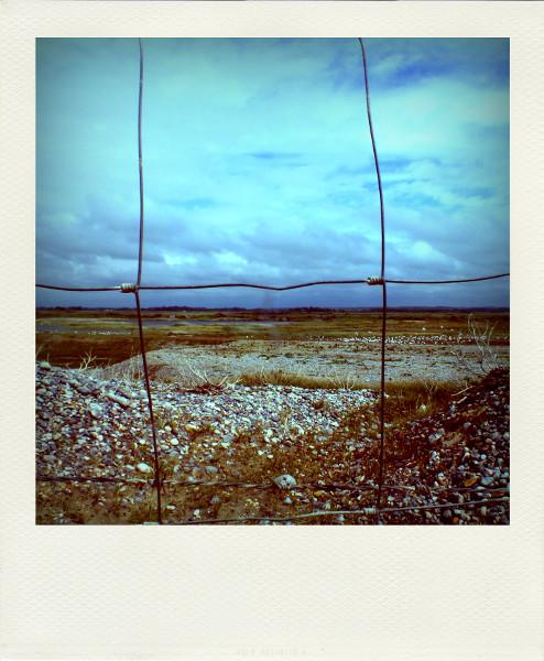 Cayeux-sur-mer - Hable d`Ault (Somme - 80410) [2012] (Photo de Didier Desmet) Pola [Artiste Infirme Moteur Cérébral] [Infirmité Motrice Cérébrale] [IMC] [Paralysie Cérébrale] [Cerebral Palsy] [Handicap]