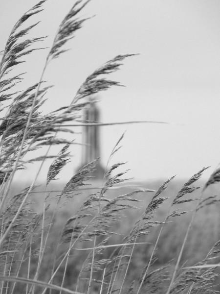 Cayeux-sur-mer - Hable d`Ault - Vue sur le sémaphore (L`Amer Sud) (Somme - 80410) [2014] (Photo de Didier Desmet) Mars [Artiste Infirme Moteur Cérébral] [Infirmité Motrice Cérébrale] [IMC] [Paralysie Cérébrale] [Cerebral Palsy] [Handicap]