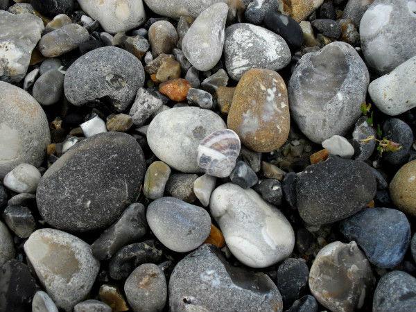 Cayeux-sur-mer - L`escargot (Somme - 80410) [2011] (Photo de Didier Desmet) Juillet [Artiste Infirme Moteur Cérébral] [Infirmité Motrice Cérébrale] [IMC] [Paralysie Cérébrale] [Cerebral Palsy] [Handicap]