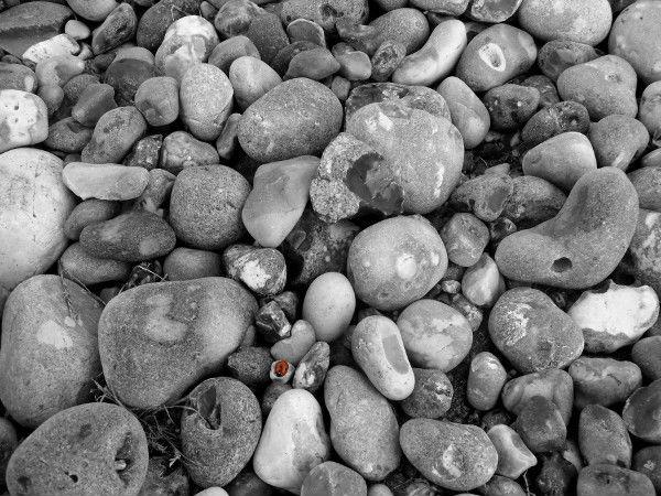 Cayeux-sur-mer - La coccinelle (Somme - 80410) [2011] (Photo de Didier Desmet) [Artiste Infirme Moteur Cérébral] [Infirmité Motrice Cérébrale] [IMC] [Paralysie Cérébrale] [Cerebral Palsy] [Handicap]