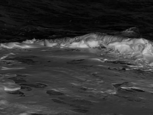 Cayeux-sur-mer - La mer (Somme - 80410) [2018] (Photo de Didier Desmet) [Artiste Infirme Moteur Cérébral] [Infirmité Motrice Cérébrale] [IMC] [Paralysie Cérébrale] [Cerebral Palsy] [Handicap]