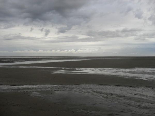 Cayeux-sur-mer - La plage de Brighton (Somme - 80410) [2011] (Photo de Didier Desmet) Août 1 [Artiste Infirme Moteur Cérébral] [Infirmité Motrice Cérébrale] [IMC] [Paralysie Cérébrale] [Cerebral Palsy] [Handicap]