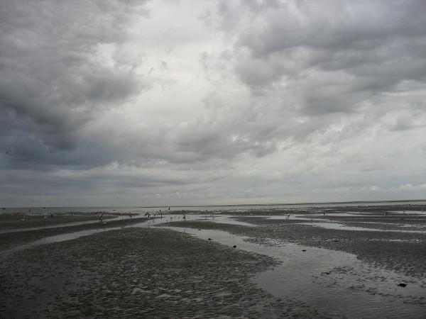 Cayeux-sur-mer - La plage de Brighton (Somme - 80410) [2011] (Photo de Didier Desmet) Août 2 [Artiste Infirme Moteur Cérébral] [Infirmité Motrice Cérébrale] [IMC] [Paralysie Cérébrale] [Cerebral Palsy] [Handicap]