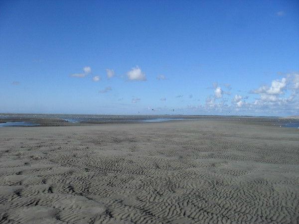 Cayeux-sur-mer - La plage de Brighton (Somme - 80410) [2011] (Photo de Didier Desmet) Août 3 [Artiste Infirme Moteur Cérébral] [Infirmité Motrice Cérébrale] [IMC] [Paralysie Cérébrale] [Cerebral Palsy] [Handicap]