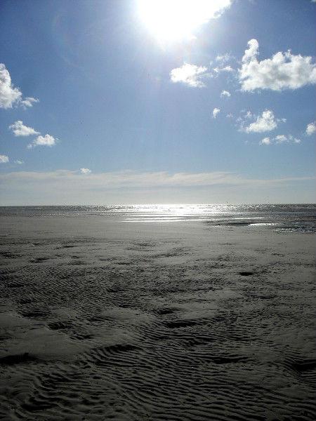 Cayeux-sur-mer - La plage de Brighton (Somme - 80410) [2011] (Photo de Didier Desmet) Août 4 [Artiste Infirme Moteur Cérébral] [Infirmité Motrice Cérébrale] [IMC] [Paralysie Cérébrale] [Cerebral Palsy] [Handicap]