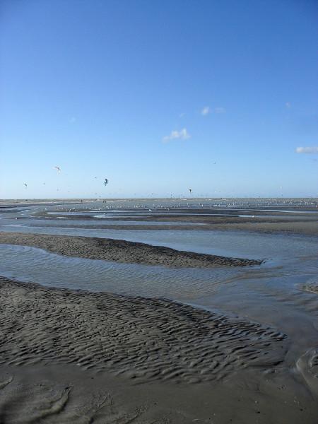 Cayeux-sur-mer - La plage de Brighton (Somme - 80410) [2011] (Photo de Didier Desmet) Août 5 [Artiste Infirme Moteur Cérébral] [Infirmité Motrice Cérébrale] [IMC] [Paralysie Cérébrale] [Cerebral Palsy] [Handicap]
