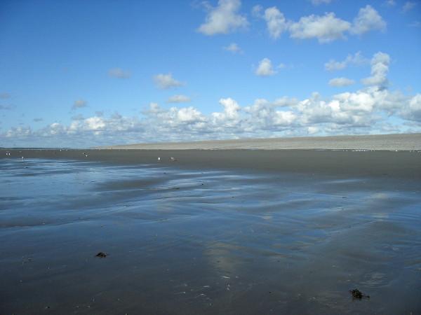 Cayeux-sur-mer - La plage de Brighton (Somme - 80410) [2011] (Photo de Didier Desmet) Août 6 [Artiste Infirme Moteur Cérébral] [Infirmité Motrice Cérébrale] [IMC] [Paralysie Cérébrale] [Cerebral Palsy] [Handicap]
