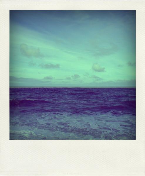 Cayeux-sur-mer - La plage de Brighton (Somme - 80410) [2011] (Photo de Didier Desmet) Aot Pola [Artiste Infirme Moteur Cérébral] [Infirmité Motrice Cérébrale] [IMC] [Paralysie Cérébrale] [Cerebral Palsy] [Handicap]