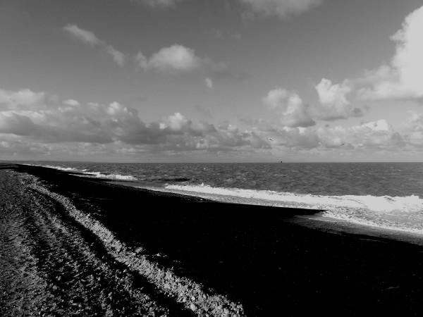 Cayeux-sur-mer - La plage de galets (Somme - 80410) [2018] (Photo de Didier Desmet) [Artiste Infirme Moteur Cérébral] [Infirmité Motrice Cérébrale] [IMC] [Paralysie Cérébrale] [Cerebral Palsy] [Handicap]