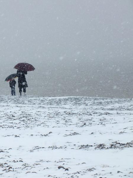 Cayeux-sur-mer - La plage de galets sous la neige - L`attente (Somme - 80410) [2013] (Photo de Didier Desmet) Mars [Artiste Infirme Moteur Cérébral] [Infirmité Motrice Cérébrale] [IMC] [Paralysie Cérébrale] [Cerebral Palsy] [Handicap]