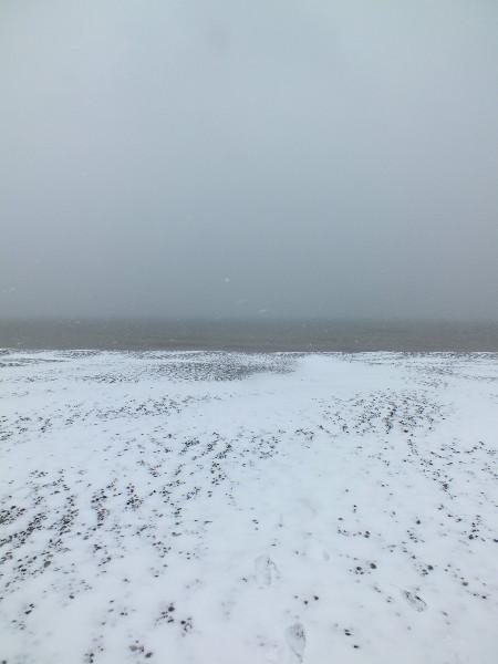 Cayeux-sur-mer - La plage de galets sous la neige (Somme - 80410) [2013] (Photo de Didier Desmet) Mars [Artiste Infirme Moteur Cérébral] [Infirmité Motrice Cérébrale] [IMC] [Paralysie Cérébrale] [Cerebral Palsy] [Handicap]
