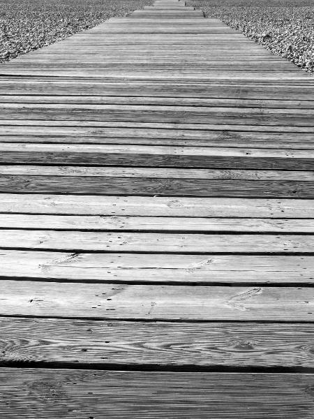 Cayeux-sur-mer - La promenade des planche (Somme - 80410) [2015] (Photo de Didier Desmet) [Artiste Infirme Moteur Cérébral] [Infirmité Motrice Cérébrale] [IMC] [Paralysie Cérébrale] [Cerebral Palsy] [Handicap]
