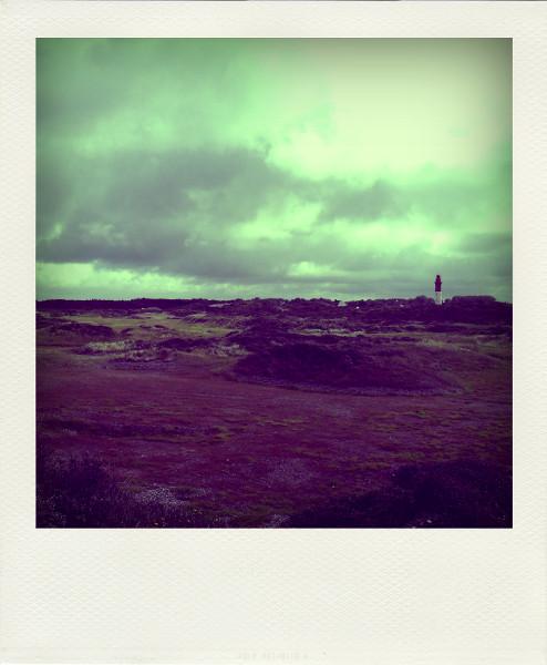 Cayeux-sur-mer - Le phare et la végétation dunaire de Brighton (Somme - 80410) [2011] (Photo de Didier Desmet) Aot Pola [Artiste Infirme Moteur Cérébral] [Infirmité Motrice Cérébrale] [IMC] [Paralysie Cérébrale] [Cerebral Palsy] [Handicap]