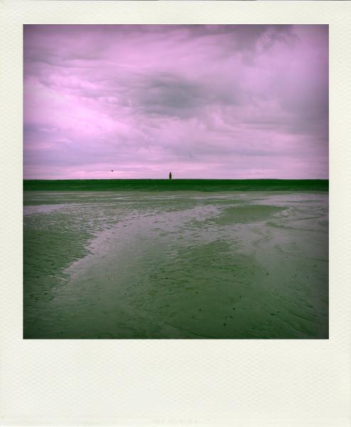 Cayeux-sur-mer - Le phare, vue de la plage de Brighton (Somme - 80410) [2011] (Photo de Didier Desmet) Aot 1 Pola [Artiste Infirme Moteur Cérébral] [Infirmité Motrice Cérébrale] [IMC] [Paralysie Cérébrale] [Cerebral Palsy] [Handicap]