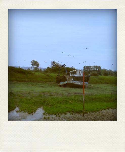 Cayeux-sur-mer - Le port du Hourdel (Somme - 80410) [2011] (Photo de Didier Desmet) Bateau Oiseaux Aot Pola [Artiste Infirme Moteur Cérébral] [Infirmité Motrice Cérébrale] [IMC] [Paralysie Cérébrale] [Cerebral Palsy] [Handicap]
