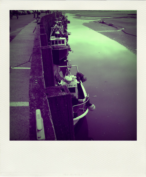 Cayeux-sur-mer - Le port du Hourdel (Somme - 80410) [2011] (Photo de Didier Desmet) Bateaux Aot 1 Pola [Artiste Infirme Moteur Cérébral] [Infirmité Motrice Cérébrale] [IMC] [Paralysie Cérébrale] [Cerebral Palsy] [Handicap]