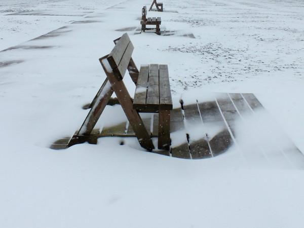 Cayeux-sur-mer - Promenade des planches et bancs enneigés (Somme - 80410) [2013] (Photo de Didier Desmet) Mars [Artiste Infirme Moteur Cérébral] [Infirmité Motrice Cérébrale] [IMC] [Paralysie Cérébrale] [Cerebral Palsy] [Handicap]