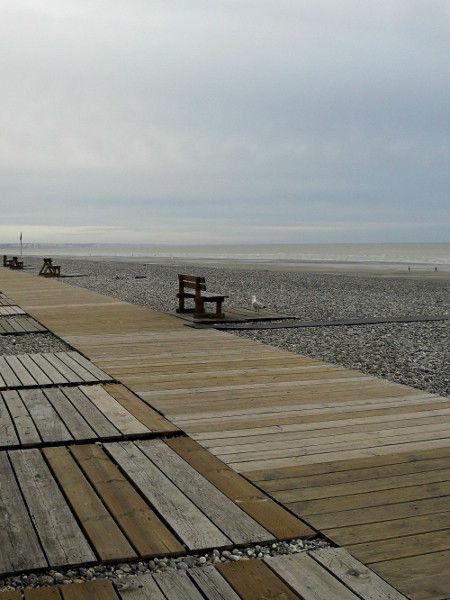 Cayeux-sur-mer - Promenade des planches et les cabines (Somme - 80410) [2011] (Photo de Didier Desmet) Banc Goéland Août [Artiste Infirme Moteur Cérébral] [Infirmité Motrice Cérébrale] [IMC] [Paralysie Cérébrale] [Cerebral Palsy] [Handicap]