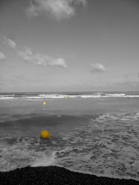 Cayeux-sur-mer (Somme - 80410) [2011] (Photo de Didier Desmet) [Artiste Infirme Moteur Cérébral] [Infirmité Motrice Cérébrale] [IMC] [Paralysie Cérébrale] [Cerebral Palsy] [Handicap]