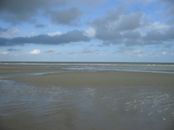 Cayeux-sur-mer (Somme - 80410) [2011] (Photo de Didier Desmet) Juillet 2 [Artiste Infirme Moteur Cérébral] [Infirmité Motrice Cérébrale] [IMC] [Paralysie Cérébrale] [Cerebral Palsy] [Handicap]
