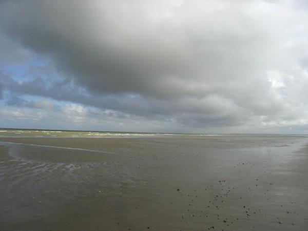 Cayeux-sur-mer (Somme - 80410) [2011] (Photo de Didier Desmet) Juillet 3 [Artiste Infirme Moteur Cérébral] [Infirmité Motrice Cérébrale] [IMC] [Paralysie Cérébrale] [Cerebral Palsy] [Handicap]