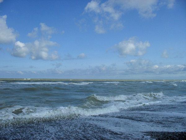 Cayeux-sur-mer (Somme - 80410) [2011] (Photo de Didier Desmet) Juillet 6 [Artiste Infirme Moteur Cérébral] [Infirmité Motrice Cérébrale] [IMC] [Paralysie Cérébrale] [Cerebral Palsy] [Handicap]