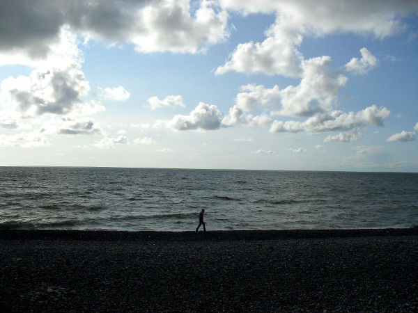 Cayeux-sur-mer (Somme - 80410) [2011] (Photo de Didier Desmet) Juin [Artiste Infirme Moteur Cérébral] [Infirmité Motrice Cérébrale] [IMC] [Paralysie Cérébrale] [Cerebral Palsy] [Handicap]