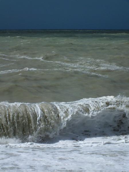 Cayeux-sur-mer (Somme - 80410) [2012] (Photo de Didier Desmet) Juin Mer et vague [Artiste Infirme Moteur Cérébral] [Infirmité Motrice Cérébrale] [IMC] [Paralysie Cérébrale] [Cerebral Palsy] [Handicap]