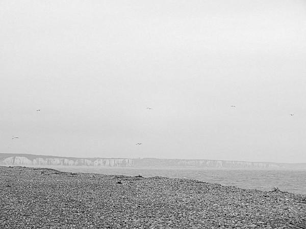 Cayeux-sur-mer - Vue sur les falaises d`Ault (Somme - 80410) [2014] (Photo de Didier Desmet) Mars [Artiste Infirme Moteur Cérébral] [Infirmité Motrice Cérébrale] [IMC] [Paralysie Cérébrale] [Cerebral Palsy] [Handicap]