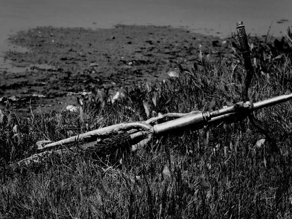 Cayeux-sur-mer - La molière - Le vélo rouillé (Somme - 80410) [2014] (Photo de Didier Desmet) [Artiste Infirme Moteur Cérébral] [Infirmité Motrice Cérébrale] [IMC] [Paralysie Cérébrale] [Cerebral Palsy] [Handicap]