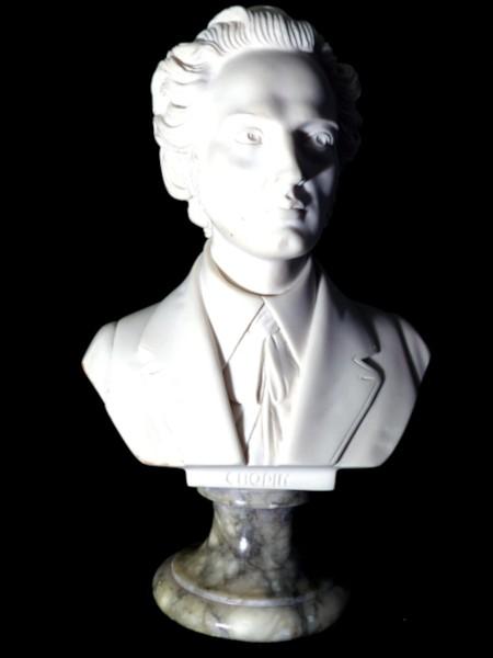 Chopin [2020] (Photo de Didier Desmet) Buste de Giannelli [Artiste Infirme Moteur Cérébral] [Infirmité Motrice Cérébrale] [IMC] [Paralysie Cérébrale] [Cerebral Palsy] [Handicap] [Kawaii]
