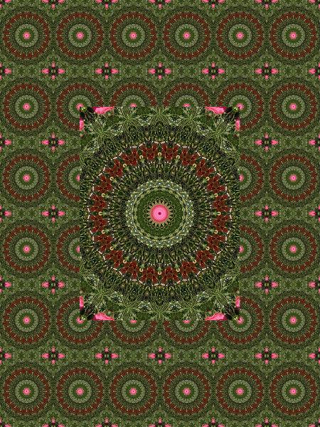 Composition arachnéenne [2012] (Création et conception graphique de Didier Desmet) [Motif] [Pattern] [Motifs] [Patterns] [Artiste Infirme Moteur Cérébral] [Infirmité Motrice Cérébrale] [IMC] [Paralysie Cérébrale] [Cerebral Palsy] [Handicap]