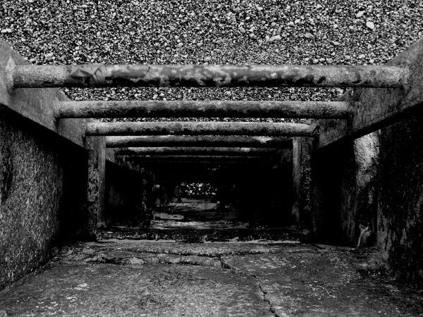 Descente - Port du Tréport (Seine-Maritime - 76470) [2016] (Photo de Didier Desmet) Echelle Monochrome [Artiste Infirme Moteur Cérébral] [Infirmité Motrice Cérébrale] [IMC] [Paralysie Cérébrale] [Cerebral Palsy] [Handicap]