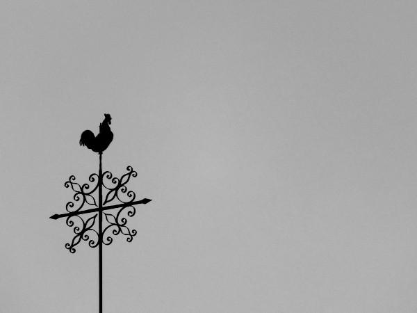 Eu - Girouette au sommet de la collégiale Notre Dame près du Château d`Eu (Seine-Maritime - 76260) [2016] (Photo de Didier Desmet) Noir et blanc [Artiste Infirme Moteur Cérébral] [Infirmité Motrice Cérébrale] [IMC] [Paralysie Cérébrale] [Cerebral Palsy] [Handicap]
