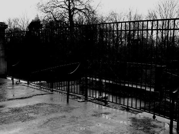 Eu - Grilles du Château d`Eu (Côté Nord) (Seine-Maritime - 76260) [2016] (Photo de Didier Desmet) Noir et blanc 1 [Artiste Infirme Moteur Cérébral] [Infirmité Motrice Cérébrale] [IMC] [Paralysie Cérébrale] [Cerebral Palsy] [Handicap]