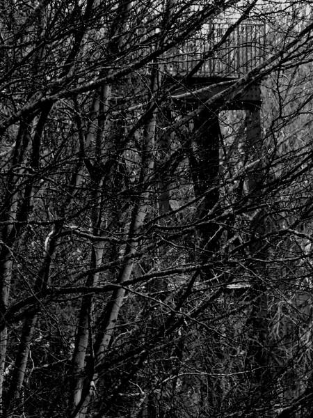 Eu - Tour métallique vue du jardin du Château d`Eu (Côté Nord) (Seine-Maritime - 76260) [2016] (Photo de Didier Desmet) Noir et blanc [Artiste Infirme Moteur Cérébral] [Infirmité Motrice Cérébrale] [IMC] [Paralysie Cérébrale] [Cerebral Palsy] [Handicap]