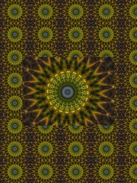 Fleurs d`anis [2012] (Création et conception graphique de Didier Desmet) [Motif] [Pattern] [Motifs] [Patterns] [Artiste Infirme Moteur Cérébral] [Infirmité Motrice Cérébrale] [IMC] [Paralysie Cérébrale] [Cerebral Palsy] [Handicap]