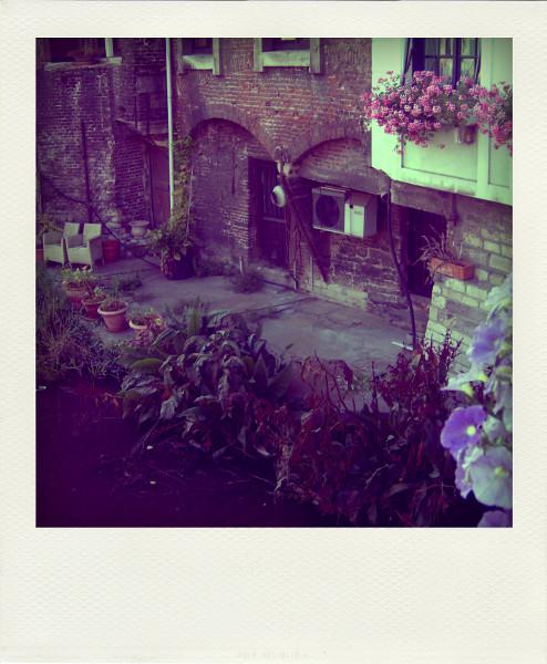 Gand (Belgique) [2009] (Photo de Didier Desmet) 3 Pola [Artiste Infirme Moteur Cérébral] [Infirmité Motrice Cérébrale] [IMC] [Paralysie Cérébrale] [Cerebral Palsy] [Handicap]
