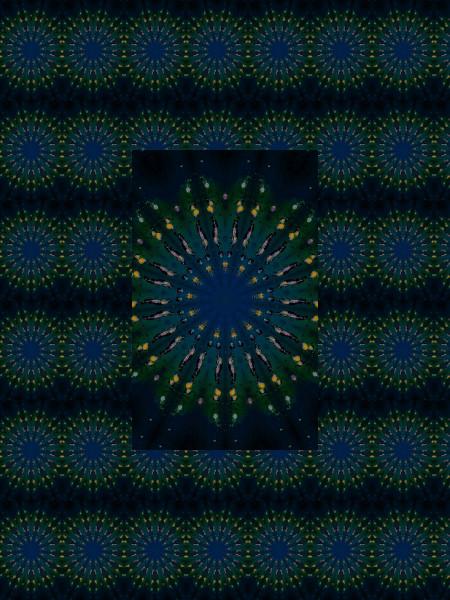 Insectes [2012] (Création et conception graphique de Didier Desmet) [Motif] [Pattern] [Motifs] [Patterns] [Artiste Infirme Moteur Cérébral] [Infirmité Motrice Cérébrale] [IMC] [Paralysie Cérébrale] [Cerebral Palsy] [Handicap]